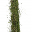 Straw collar Lelle, L130cm, hay / moss, green